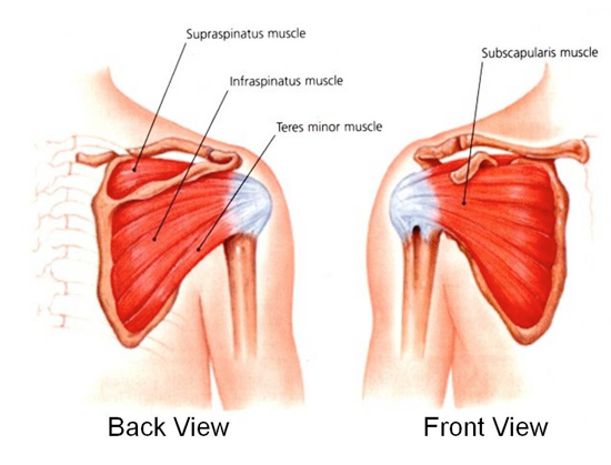 subacromial steroid injection video